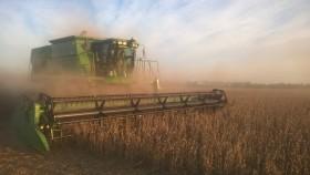 Esta semana sigue el tiempo ideal para avanzar con la cosecha gruesa
