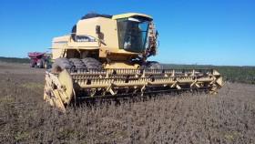 Productores del norte que hayan vendido soja en junio podrán cobrar una compensación de 283 $/tonelada: permite cubrir el 25% del flete desde Las Lajitas a Rosario