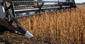 """Con el comienzo de la cosecha de soja de primera se acabaron los """"premios"""" ofrecidos en el mercado disponible"""