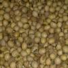 La Afip intimó a una exportadora de soja desactivada a pagar reajustes de retenciones por 188.000 dólares