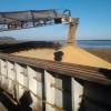 Duro de soltar: en los dos primeros días de esta semana el gobierno recaudó retenciones anticipadas de harina de soja por 30 millones de dólares