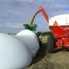 Los precios de la soja disponible empalmaron con los de la nueva cosecha: mala noticia para productores con bajos niveles de cobertura