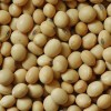 La fiesta que no fue: con la recuperación del precio de la soja se licuaron los súper premios que recibían las partidas orgánicas de la oleaginosa