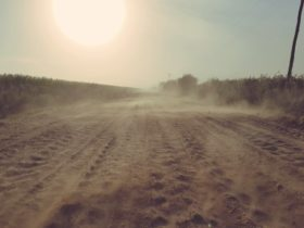 Desastre agropecuario: siguen sin aparecer perspectivas de lluvias en las zonas pampeanas necesitadas de agua