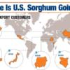 Se intensifica la guerra comercial: China bloqueó el ingreso de sorgo estadounidense con un derecho antidumping del 178%