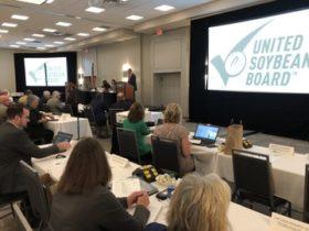 EE.UU: United Soybean Board invierte 3,2 millones de dólares en investigaciones orientadas a mejorar el tenor proteico de la soja
