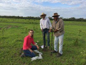Hacia un uso sostenible de los suelos