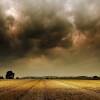 Se vienen varios días con tormentas intensas: los mayores acumulados de precipitaciones se registrarán en el NEA
