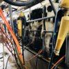 Cambio de escenario: con la apreciación cambiaria ahora son las industrias lácteas focalizadas en el mercado interno las que tienen mayor capacidad de pago