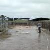 Uruguay implementará fondo de ayuda para tamberos por 80 millones de dólares: una cifra 430% superior a la destinada por el gobierno argentino