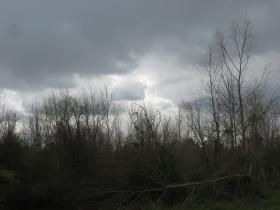 En la semana no se prevé la aparición de lluvias ni heladas significativas