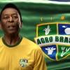 Brasil quiere ser campeón en el mundial agrícola: en el ciclo 2014/15 destinará al sector créditos oficiales por 70.000 millones de dólares