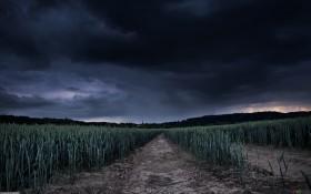 El mal tiempo seguirá hasta el miércoles: se esperan algunas tormentas fuertes
