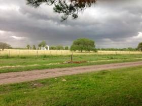 Alerta por tormentas intensas en el norte de la región pampeana