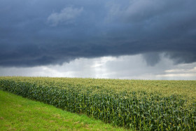 El viernes regresan las tormentas sobre el norte de la zona pampeana: no se prevén lluvias importantes en el sur