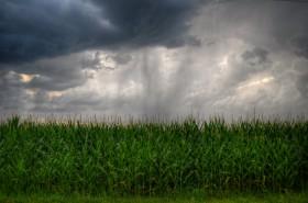 Llega el mal tiempo: mañana se prevén algunas tormentas fuertes sobre la región central del país