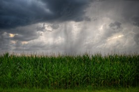 A partir del domingo se vienen varios días de lluvias en zonas necesitadas de agua: aunque algunas regiones tendrán que seguir esperando