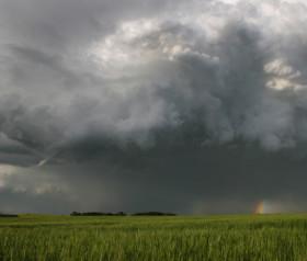 Vuelven las lluvias: la mayor probabilidad de precipitaciones se concentrará en el sur de la región pampeana