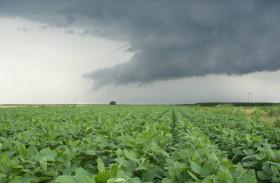 Alerta: mañana se esperan nuevas tormentas fuertes en el norte de la zona pampeana