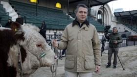 Se recuperan las importaciones argentinas de semen bovino por el resurgimiento ganadero en las zonas abandonadas por la agricultura