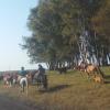 El salario neto promedio registrado en el sector agropecuario argentino es de 12.723 pesos