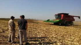 En el último año el agro fue el sector productivo que creó la mayor cantidad de empleos formales