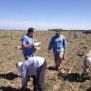 En el último año el sector agropecuario argentino creó 6900 empleos formales