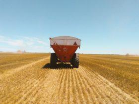 """Novedad: se podrá vender trigo """"a fijar"""" en función de los precios de los contratos futuros del Matba Rofex"""