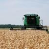 Vender trigo en cosecha se anota en el ranking de los peores negocios del año: la retención efectiva supera el 35%