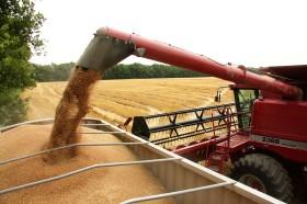 En apenas tres días el gobierno recaudó casi 29 millones de dólares con retenciones anticipadas de trigo