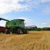Precios cuidados para el trigo: el gobierno nacional garantiza valores planchados en cosecha con cepo exportador