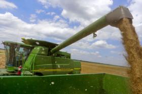 Se cumple un mes del anuncio no cumplido de liberar las exportaciones de trigo: la retención efectiva alcanzó el 45%