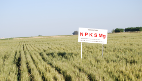 Media sanción para el proyecto que permitirá deducir de Ganancias el costo del fertilizante: se prevé que estará listo en la próxima siembra de trigo