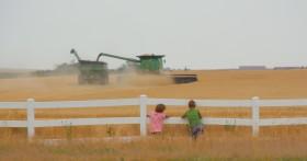 Buena suerte con la receta argentina: el gobierno ruso anunció que aplicará derechos de exportación al trigo