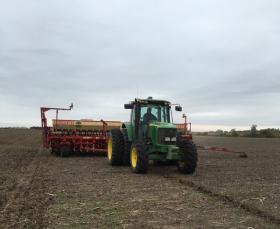 """Productores deberán informar al Inase la cantidad de semilla de trigo de """"uso propio"""" que sembrarán este año con la documentación que avale su origen legal"""