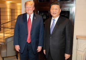 ¿Fin de la guerra comercial?: Aseguran que China volvió a comprar soja estadounidense