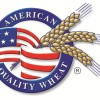 Faltan dólares pero no importa: Argentina regalará el mercado brasileño de trigo a EE.UU. por otro año más