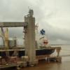 El mundo cambió: 29% de la exportación argentina de trigo está en manos de una corporación estatal china