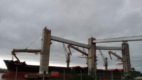 Calentando motores: exportadores comenzaron a declarar exportaciones de trigo argentino 2020/21
