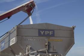 Comenzaron a recuperarse los precios de la urea: pero en el mercado argentino el fertilizante nitrogenado sigue baratísimo medido en valor maíz