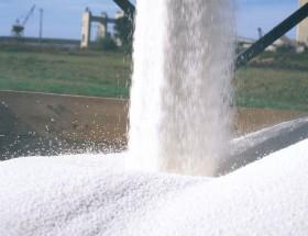 Buena noticia para los productores de cereales: se derrumbó el precio internacional de la urea granulada
