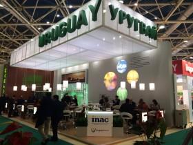 La soja perdió el primer puesto del ranking: la principal fuente generadora de divisas en Uruguay volvió a ser la carne bovina