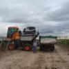 Amigos son los amigos: en plena aceleración inflacionaria las bodegas argentinas estiraron los plazos de pago de la cosecha 2019 de uva hasta el año que viene