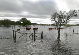 Investigadores del INTA Castelar alertaron dos meses atrás que se preveían súper lluvias en las zonas ahora inundadas: pocos le prestaron atención