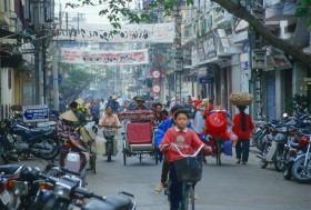Vietnam fue el principal cliente de la harina de soja argentina en 2015 con compras por 1230 millones de dólares
