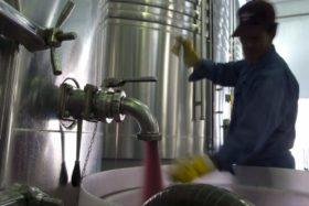 Premio al mejor lobby: la vitivinícola es la única actividad agroindustrial que logró obtener una recomposición de los reintegros