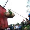 Paritarias rurales: en los últimos dieciséis meses el ajuste por inflación para los productores de yerba fue del 21,6%