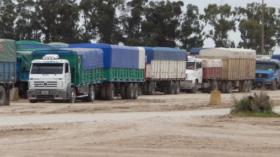 Blindaje cambiario: aumentó un 170% del ingreso de agrodivisas por la aceleración de ventas realizada por los productores