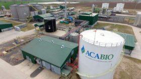 Establecieron un régimen de castigos estrictos para las fábricas etanoleras que no cumplan con el cupo asignado