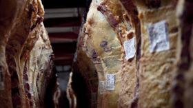 Actualizaron los pagos a cuenta de IVA que deben liquidarse para habilitar faenas bovinas con un 100% de aumento